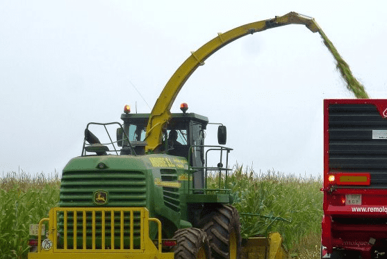 Thailand A surge in corn production